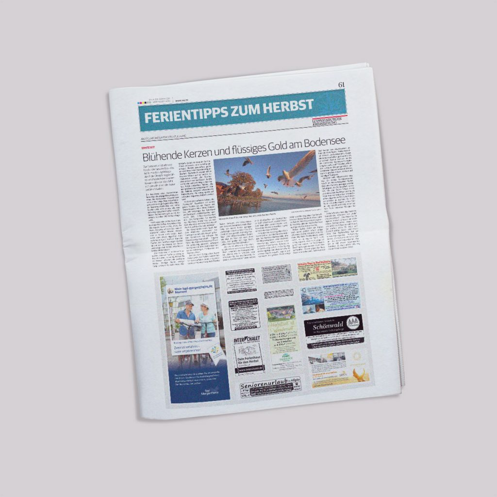Beispielseite Ludwigsburger Kreiszeitung - Reisekombi